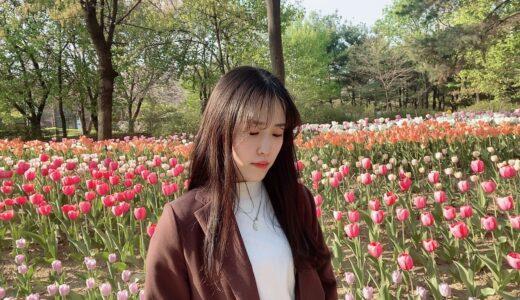 【みかんさん】ソウル市立大学国語国文学部先輩インタビュー(編入)