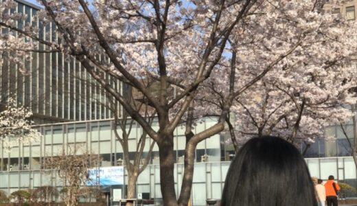 【あいさん】延世大学 地域学共同課程 大学院 先輩インタビュー(大学院)