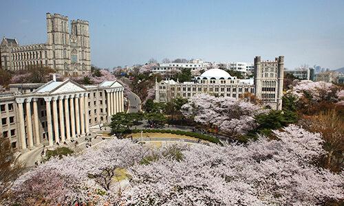 【大学別奨学金徹底比較!!】#1 慶熙大学